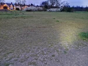 Green Space at Wanstead Flats | Forest Gate | Leytonstone Personal Trainer