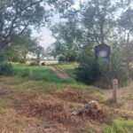 Epping Forest -near to Wandstead Flats | Forest Gate | Leytonstone Personal Trainer