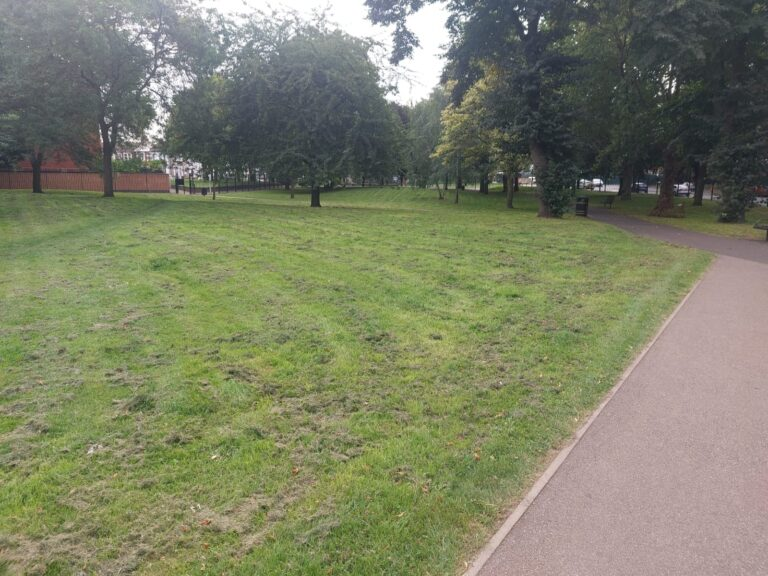 Stratford Park | Personal Trainer Tips | Image displays green space within the park