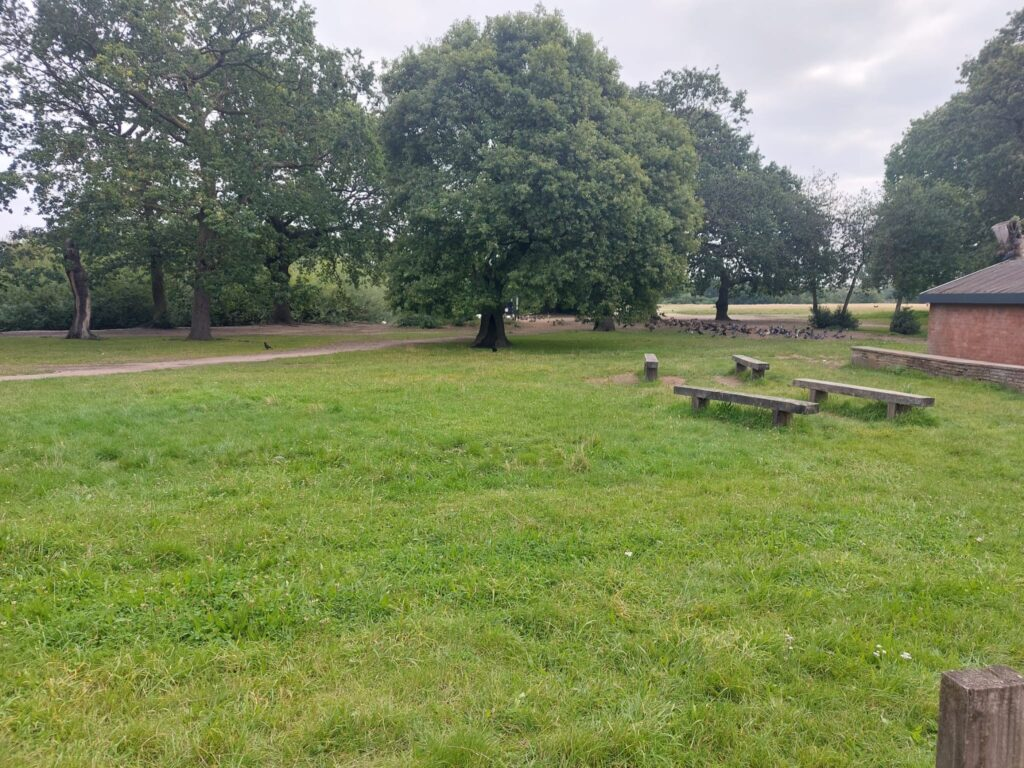 Photos of Hollow Pond Park   Walthamstow   Personal Trainer Tips