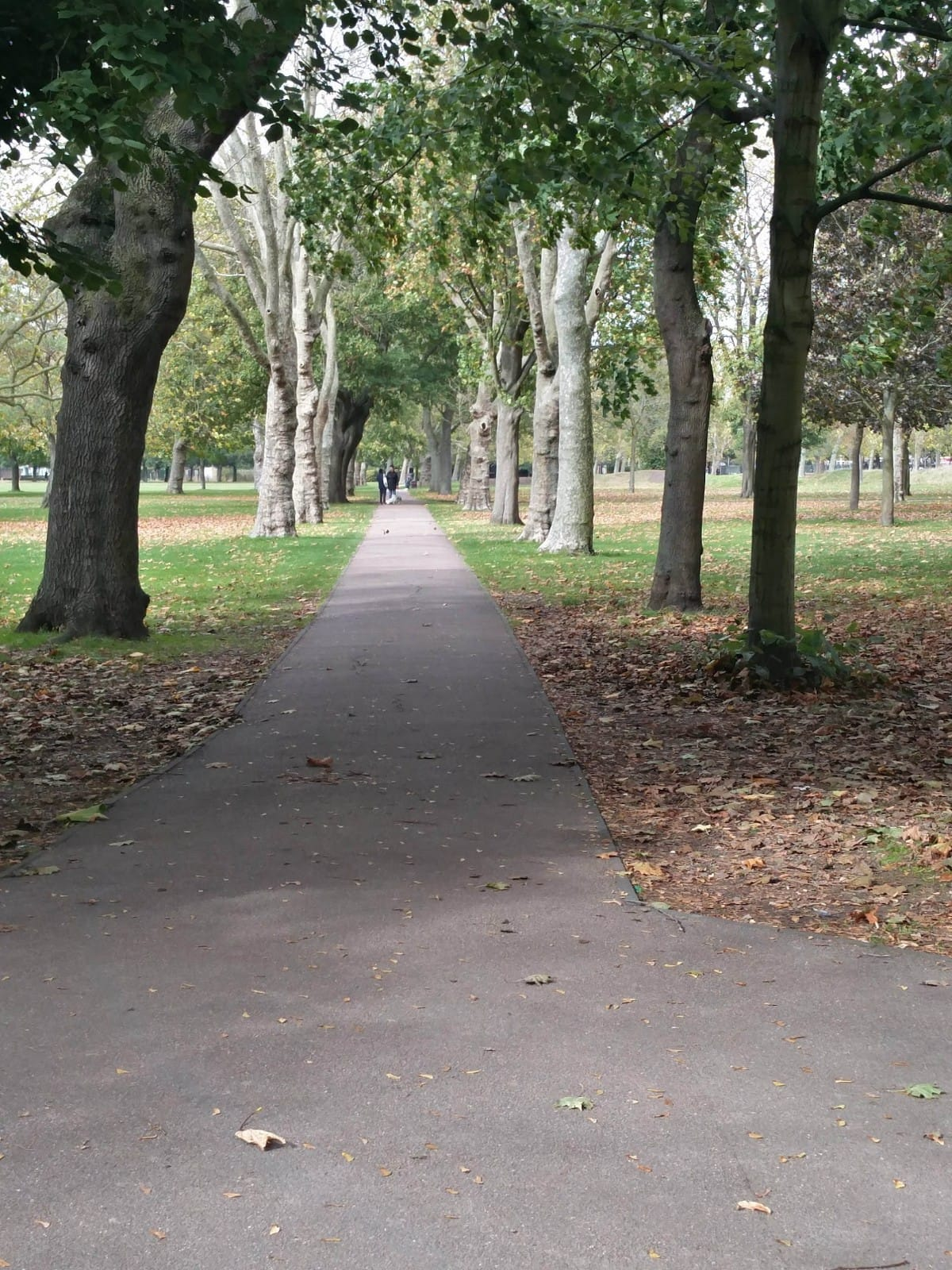 Photos of path to Olympica park gym at West Ham Park | Stratford | Personal Trainer Tips