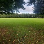 Open Space Field   St. James Park   Walthamstow   Personal Trainer
