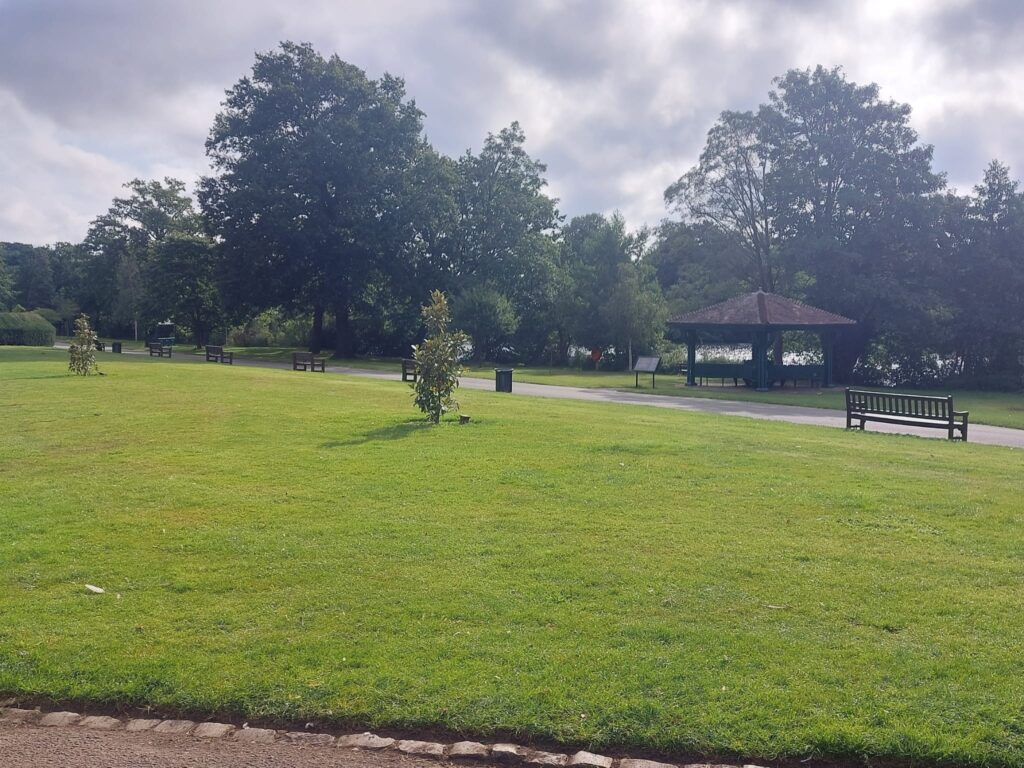 More Trees at Valentine's Park | Personal Trainer Tips | DBworkouts.co.uk